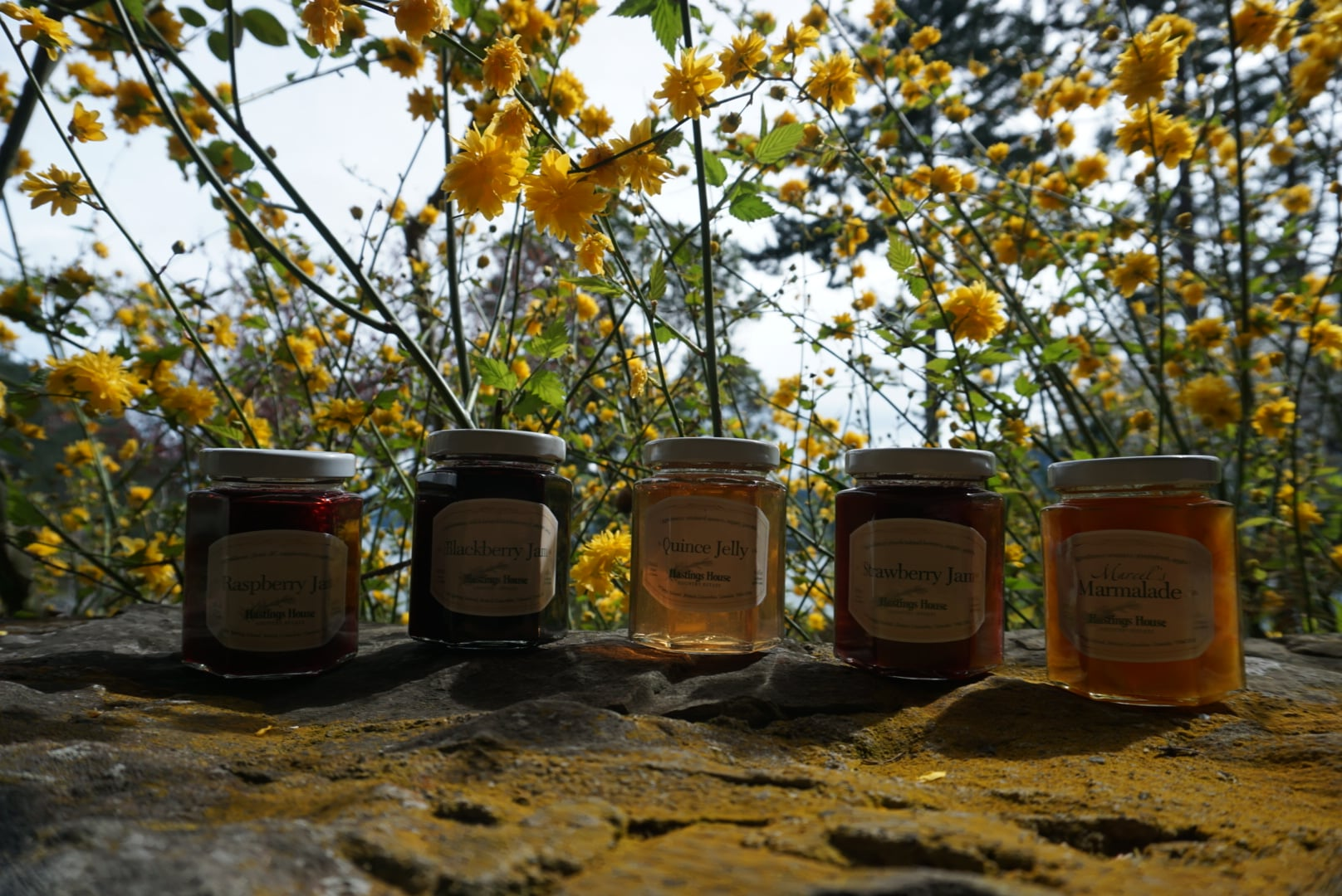 The Story Of Our Jams And Jellies