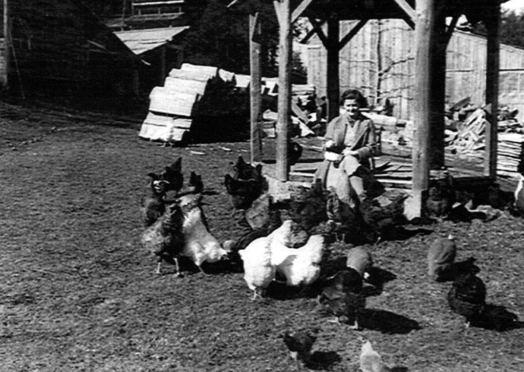 Barbara Hastings with chickens