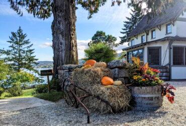Fall At Hastings House